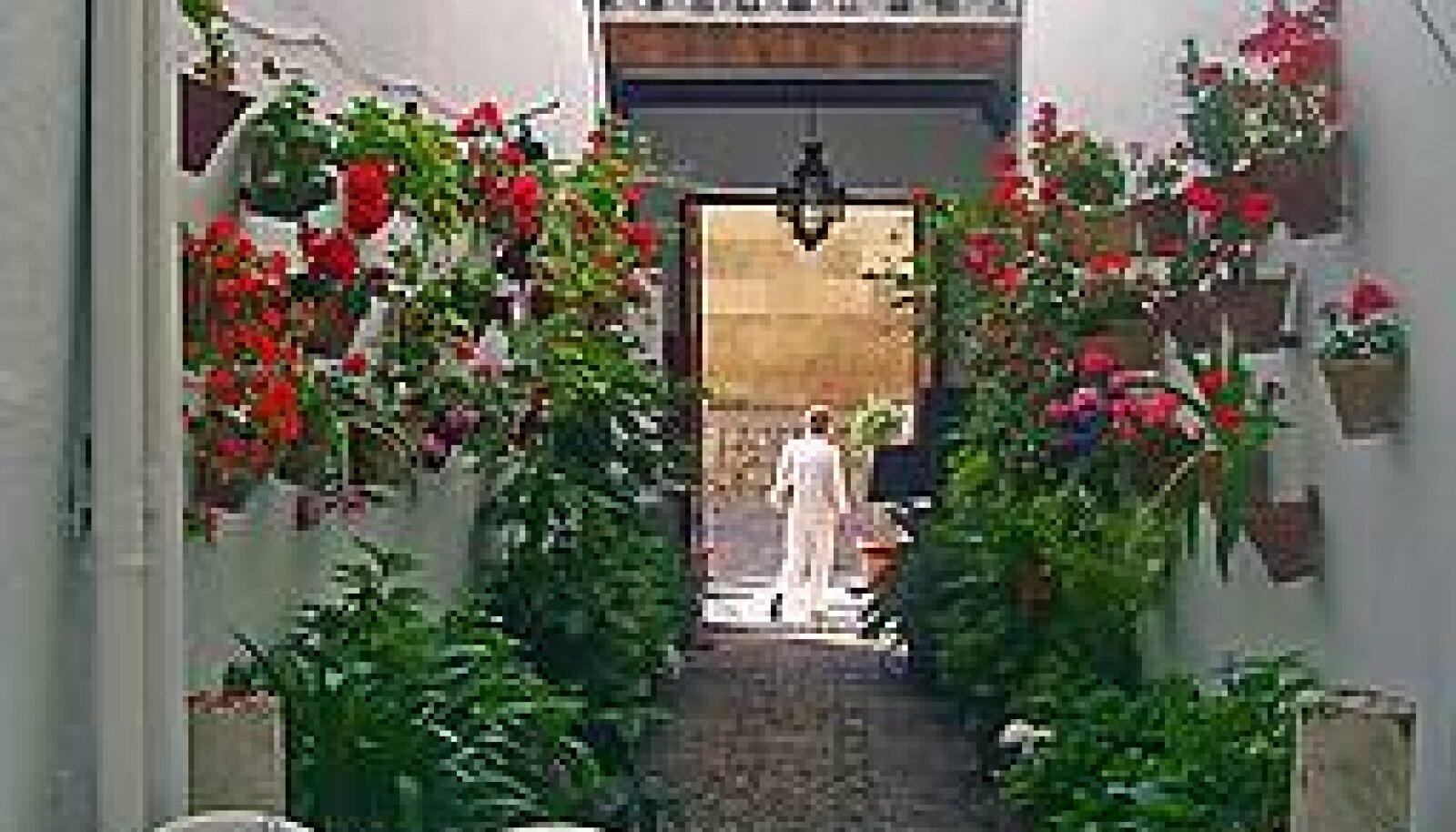 VARJULINE HOOV: Nii nagu mitmed Veneetsia majad meenutavad Casanovat, räägivad paljud Sevilla õued, et just siin peatus Don Juan... RAIVO J. RAAVE