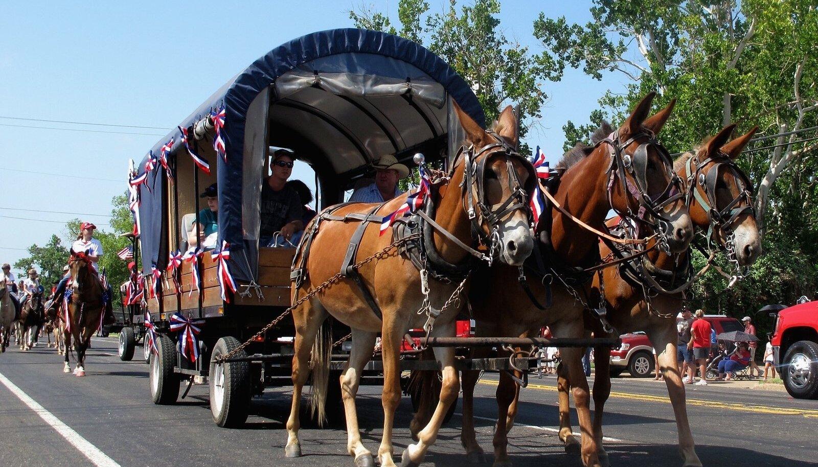 Hobuvanker USA iseseisvuspäeva pidustustel Texases Centerville'is 4. juulil. Texase iseseisvuspäev on 2. märtsil.