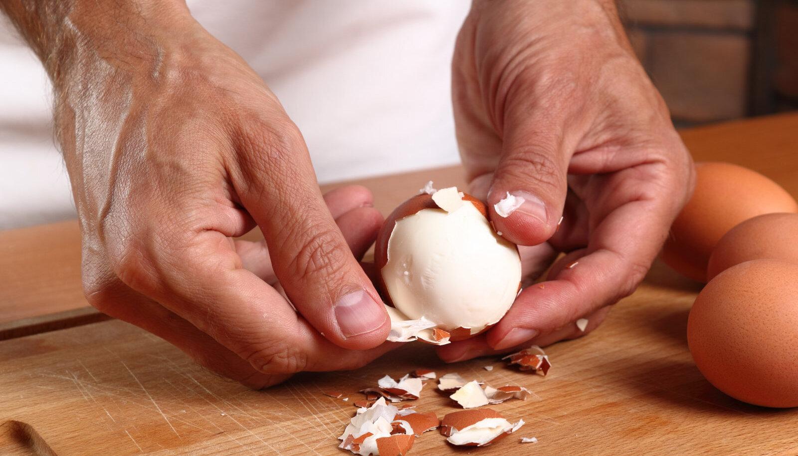 muna koorimine