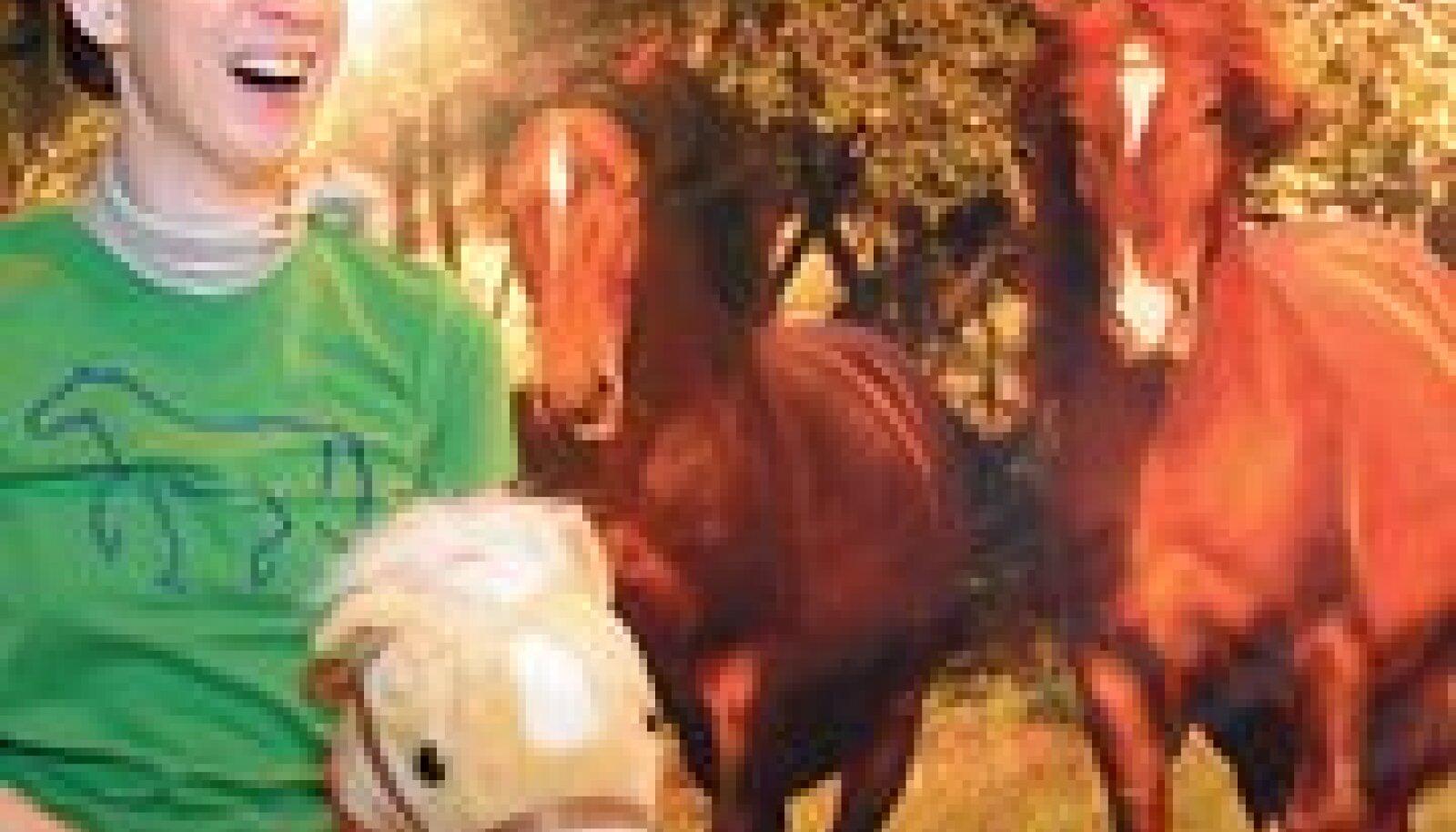 MTÜ Vana-Tori Hobuse Ühingu perenaine Ute Wohlrab on õnnelik – vanatüübilistest tori hobustest huvituvate inimeste arv suureneb iga päevaga.