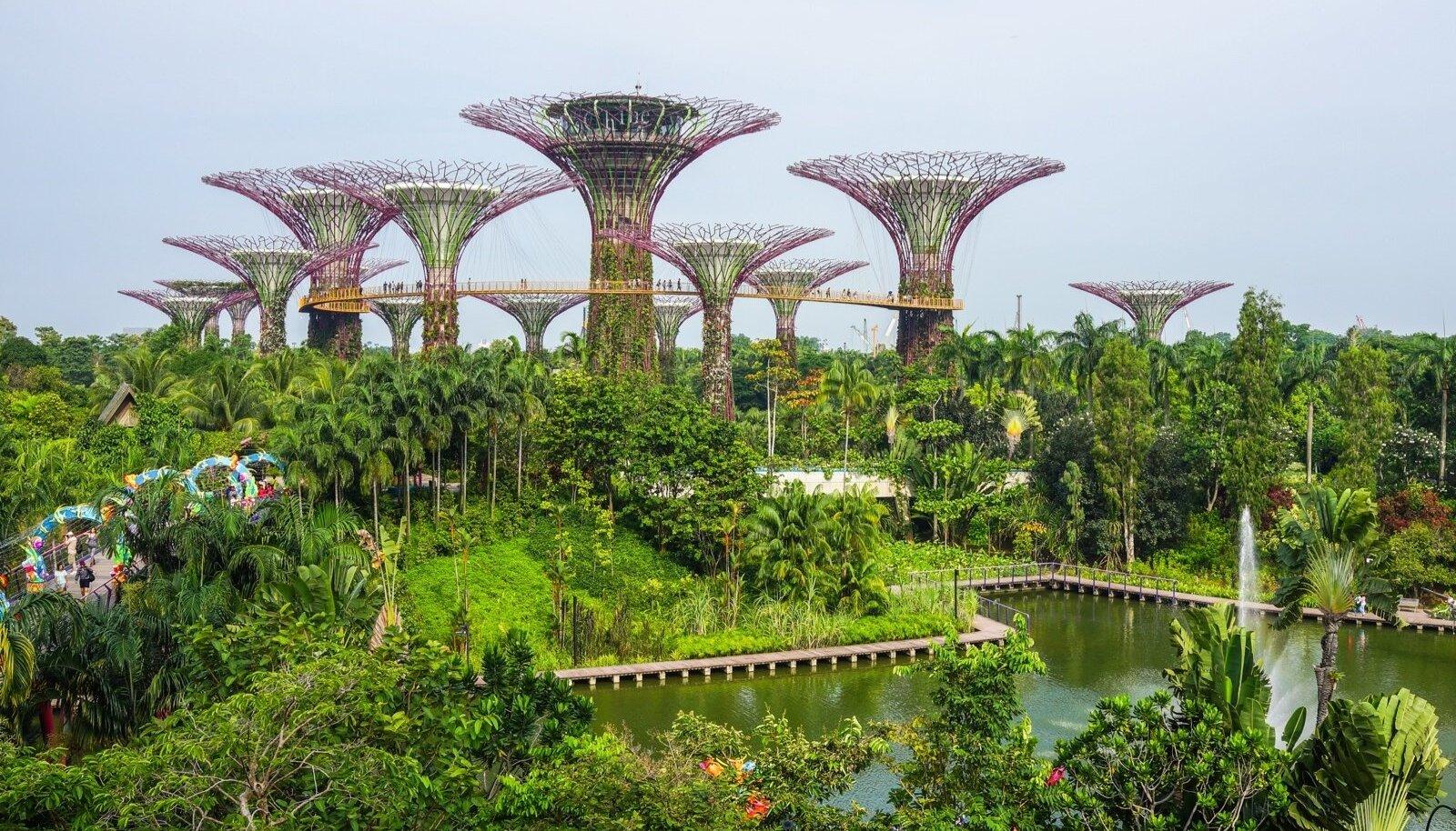 Singapuri botaanikaaed.