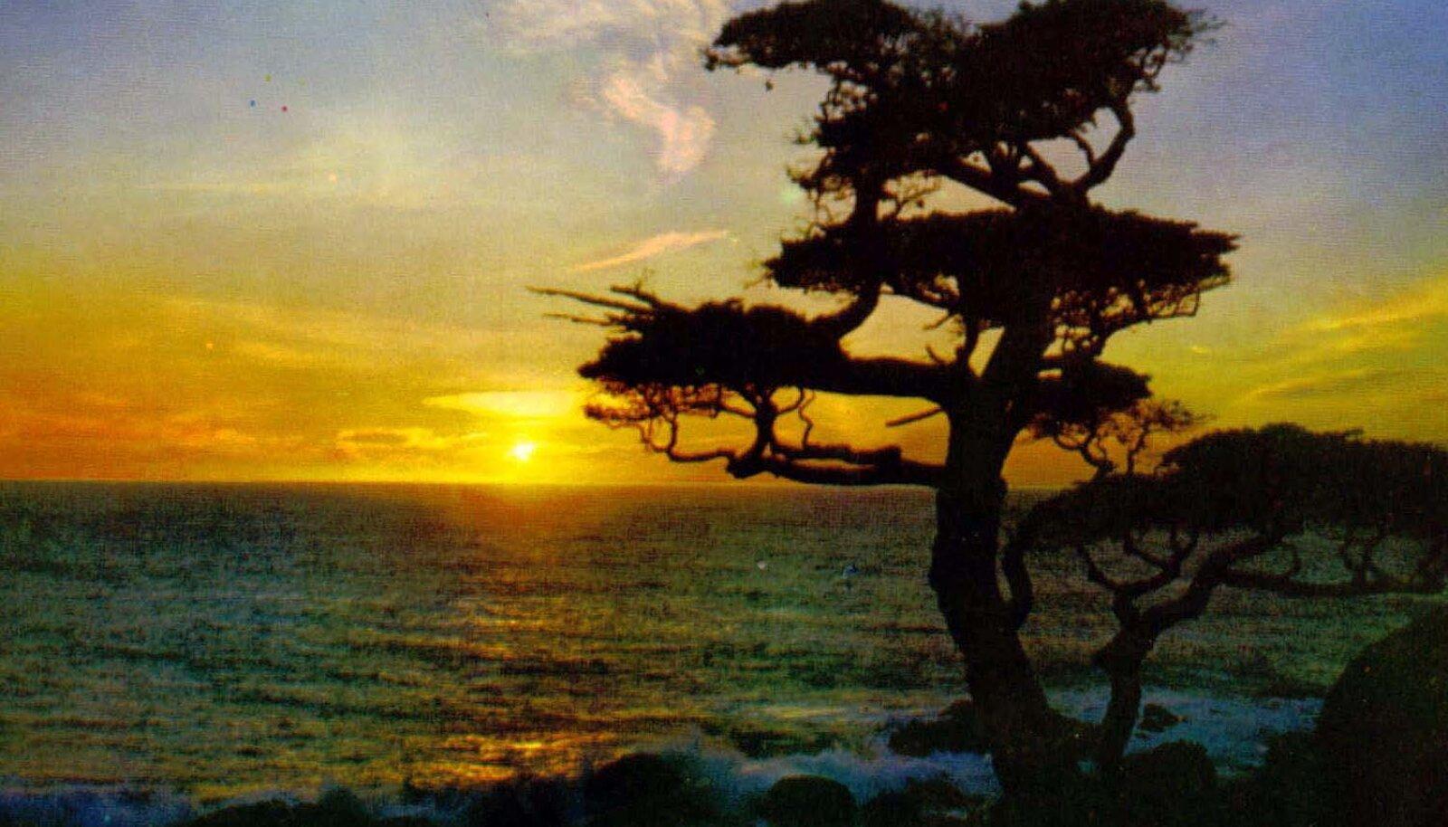 Päikeseloojang Antillidel (Foto: Wikimedia Commons / Terry Whalebone)