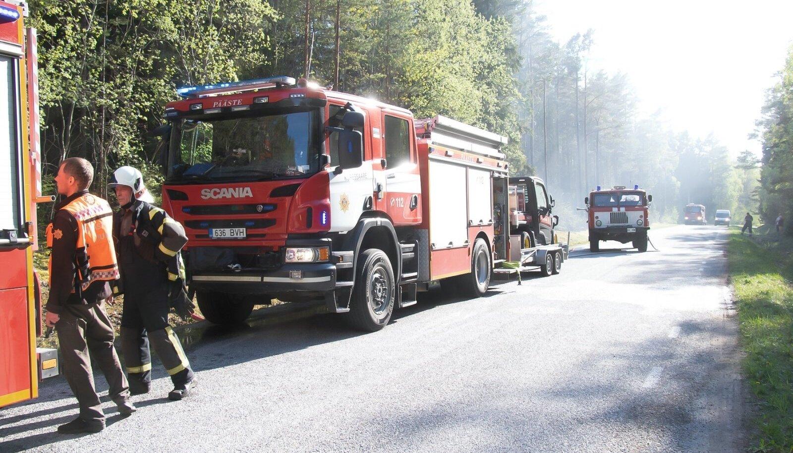 Saaremaal põles 1 ha männi- ja kuusemetsa, kõrgepingeliinikukkusid maapinnale ja süütasid kulu ja pinnase