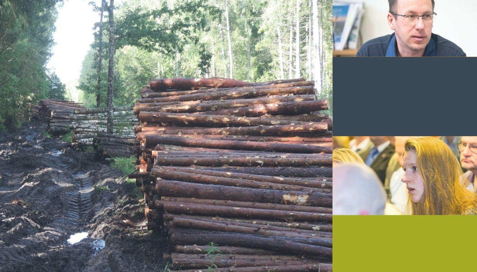 Sügavad rööpad metsamaterjali väljaveoteel on sageli olnud aktivistide meelepaha allikas. Teinekord aga see siiski ei tähenda, et tegemist oleks seaduserikkumisega.