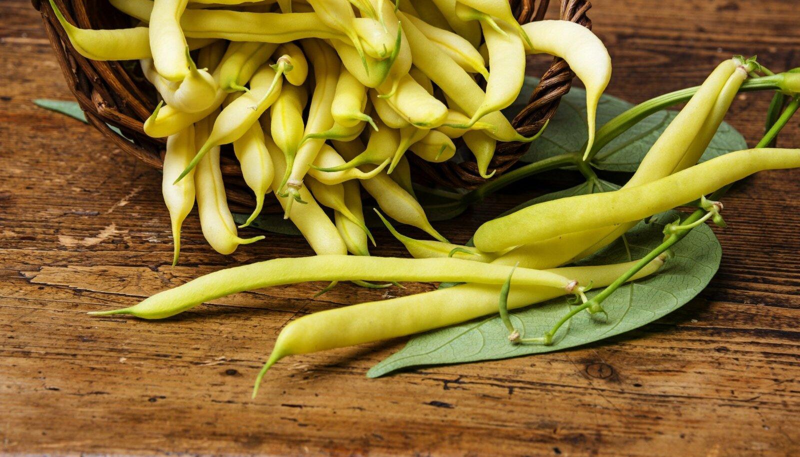 Kollaste viljadega sordid on üldiselt hinnatumad.