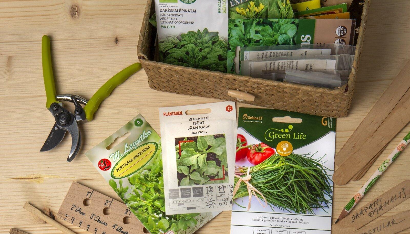3 lemmikut lehtköögivilja seemnepakki: aedportulak, kristall-lõunalill ja jaapani ogamalts.