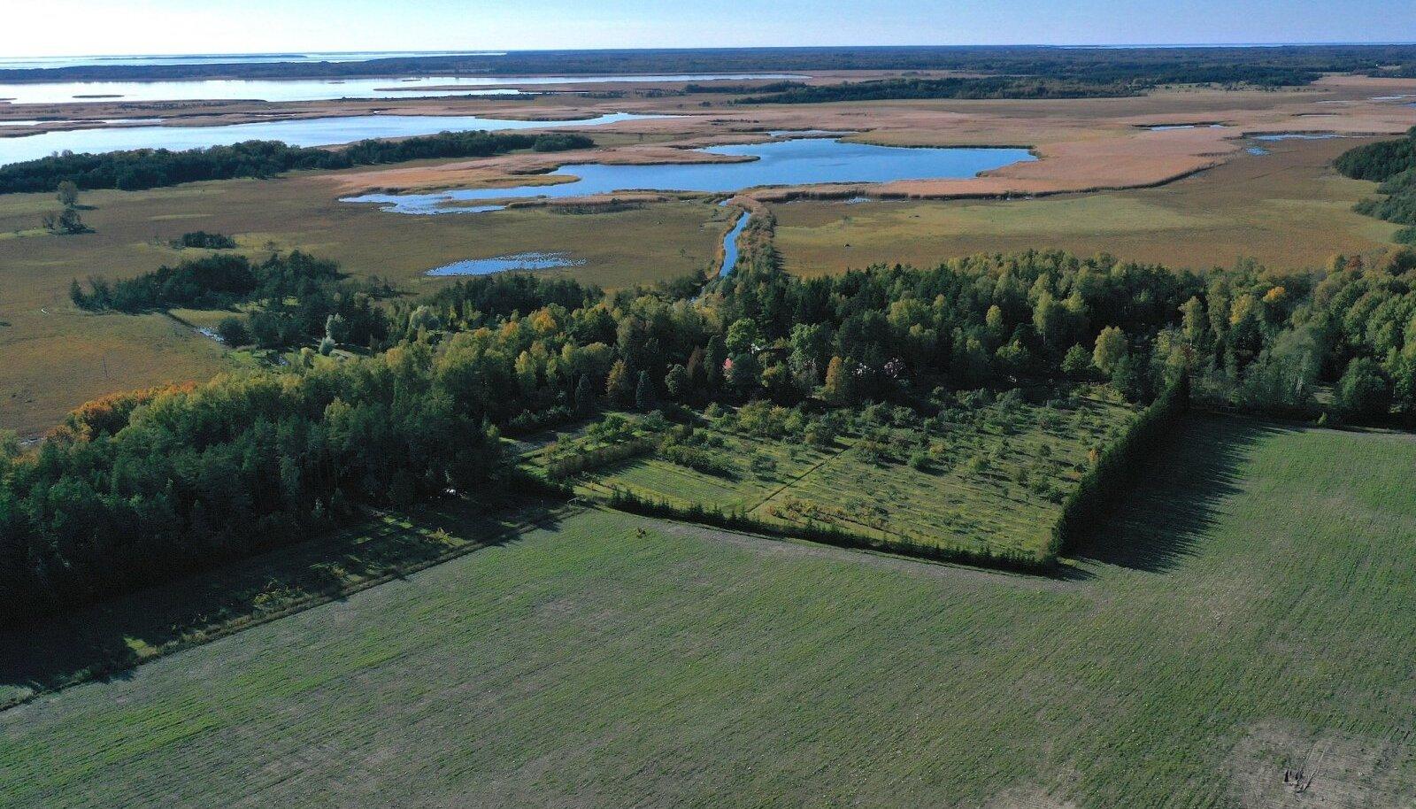 Rannikualadel on sadu maatükke, milleni pääsemiseks tuleb läbida palju teisi kinnistuid.
