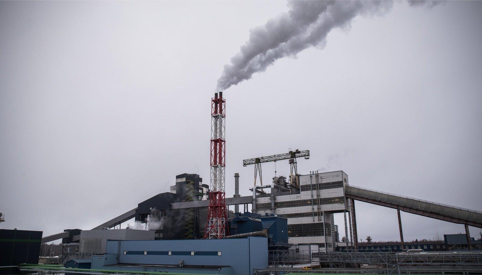 Eesti on jõudnud taastuvenergia eesmärgini suuresti tänu puidu kasutamisele elektri- ja soojatootmises mitte ainult Eesti Energia Auvere jaamas, vaid ka tavalistes kodudes, kus puudega ahju köetakse.