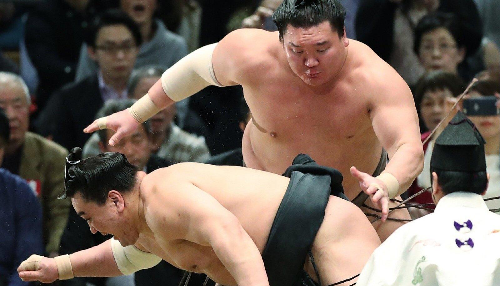 Yokozunad Hakuho ja Harumafuji