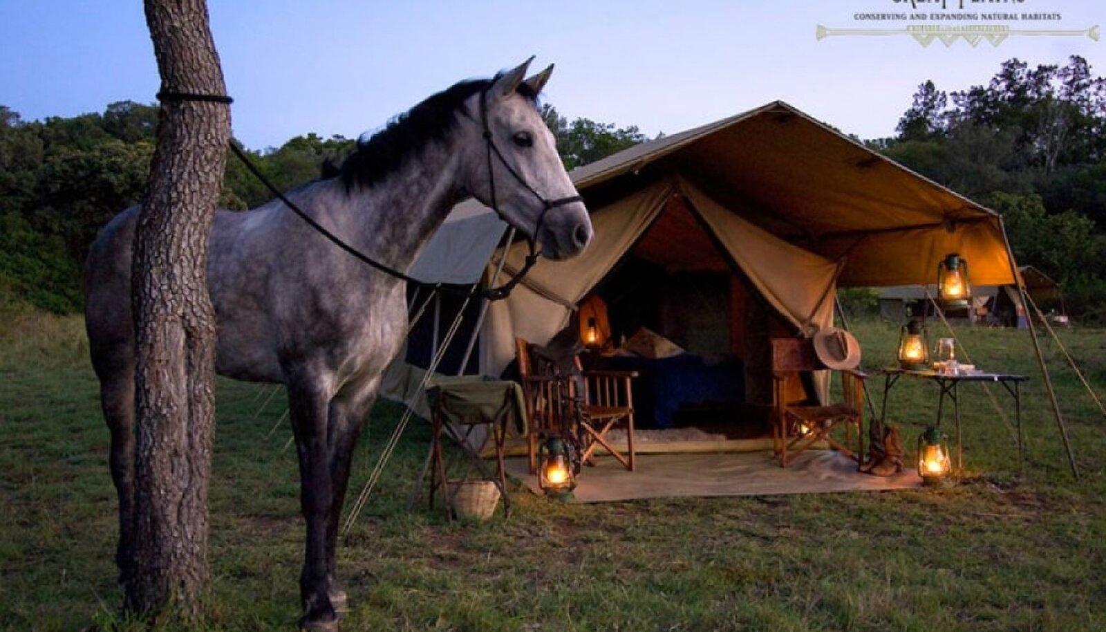 Džiibi asemel võib võtta hoopis hobuse.