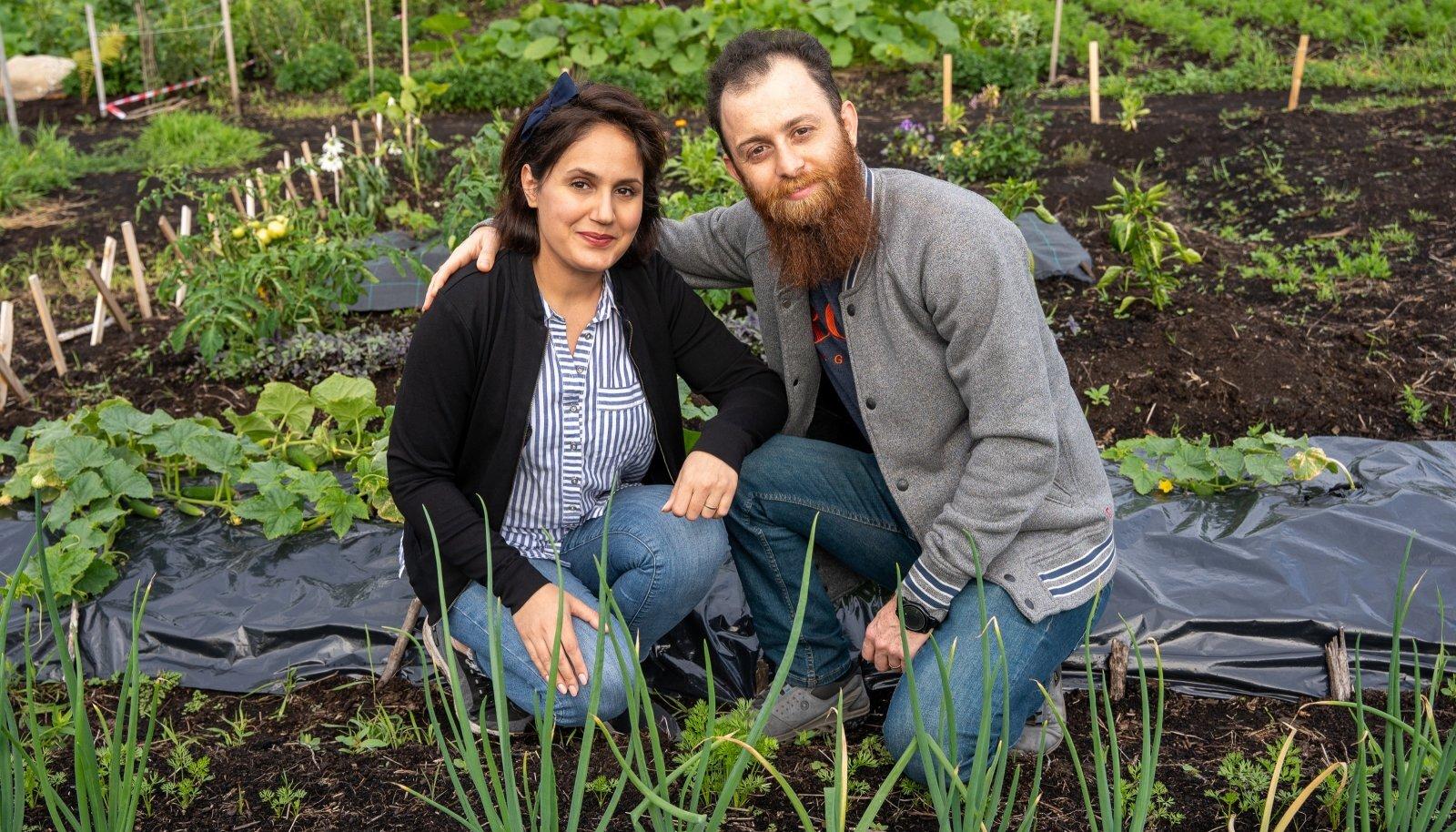 Banafsheh Khaleghdousti ja Keyvan Esmaeilzadeh Saleatani aiamaal on valmis kurgid, sibul, maasikad ja basiilik.