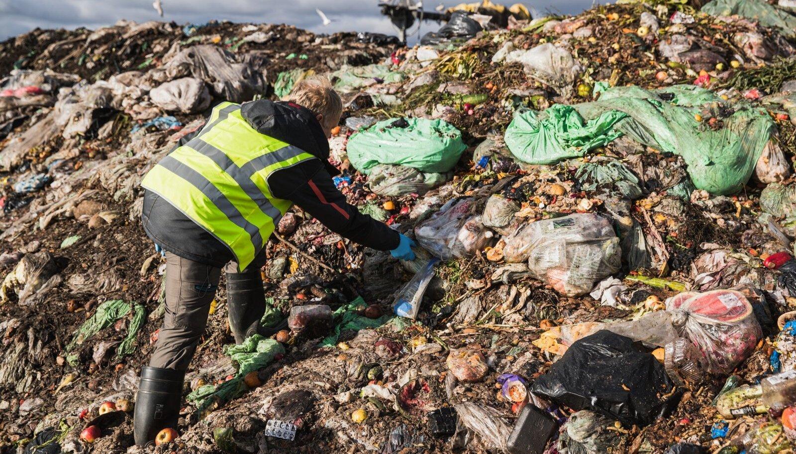 Selleks, et biojäätmetest saaks rammus väetis, peab esmalt olema inimestele tagatud võimalus biojäätmeid eraldi koguda ja ära anda. Pildil Aardlapalu prügila, kus biojäätmeid komposteeritakse.