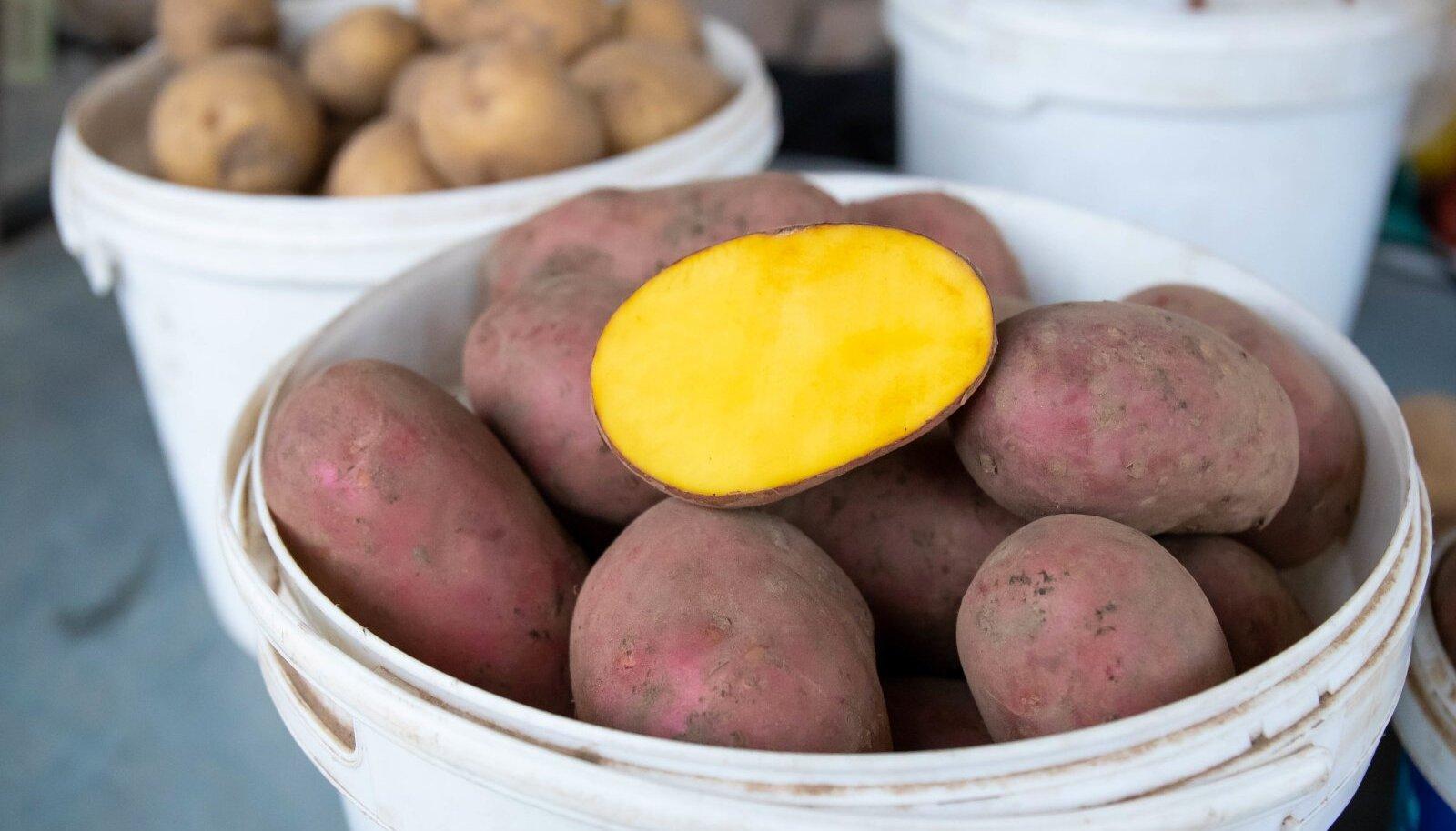 Suurima hinnatõusu aasta võrdluses on teinud kartul.