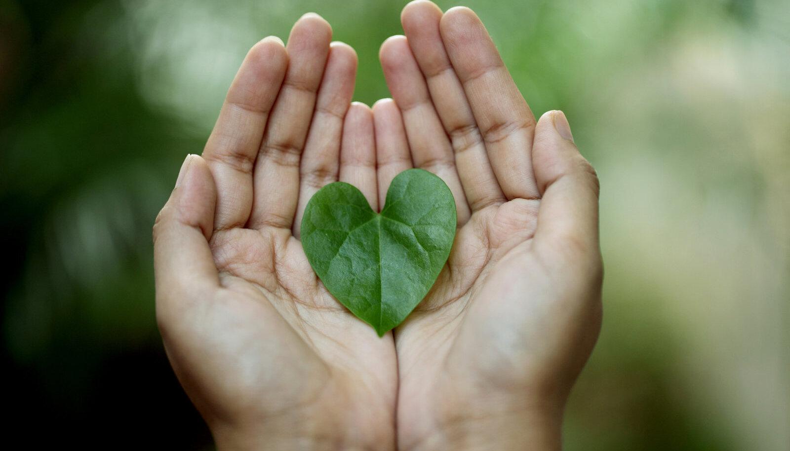 Kui sa soovid olla mõistetud ning armastatud sellena, kes oled, õpi ka ise mõistma ning armastama