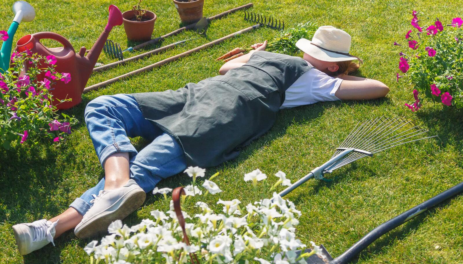 Liigne palavus on kurnav nii aednikule kui taimedele.