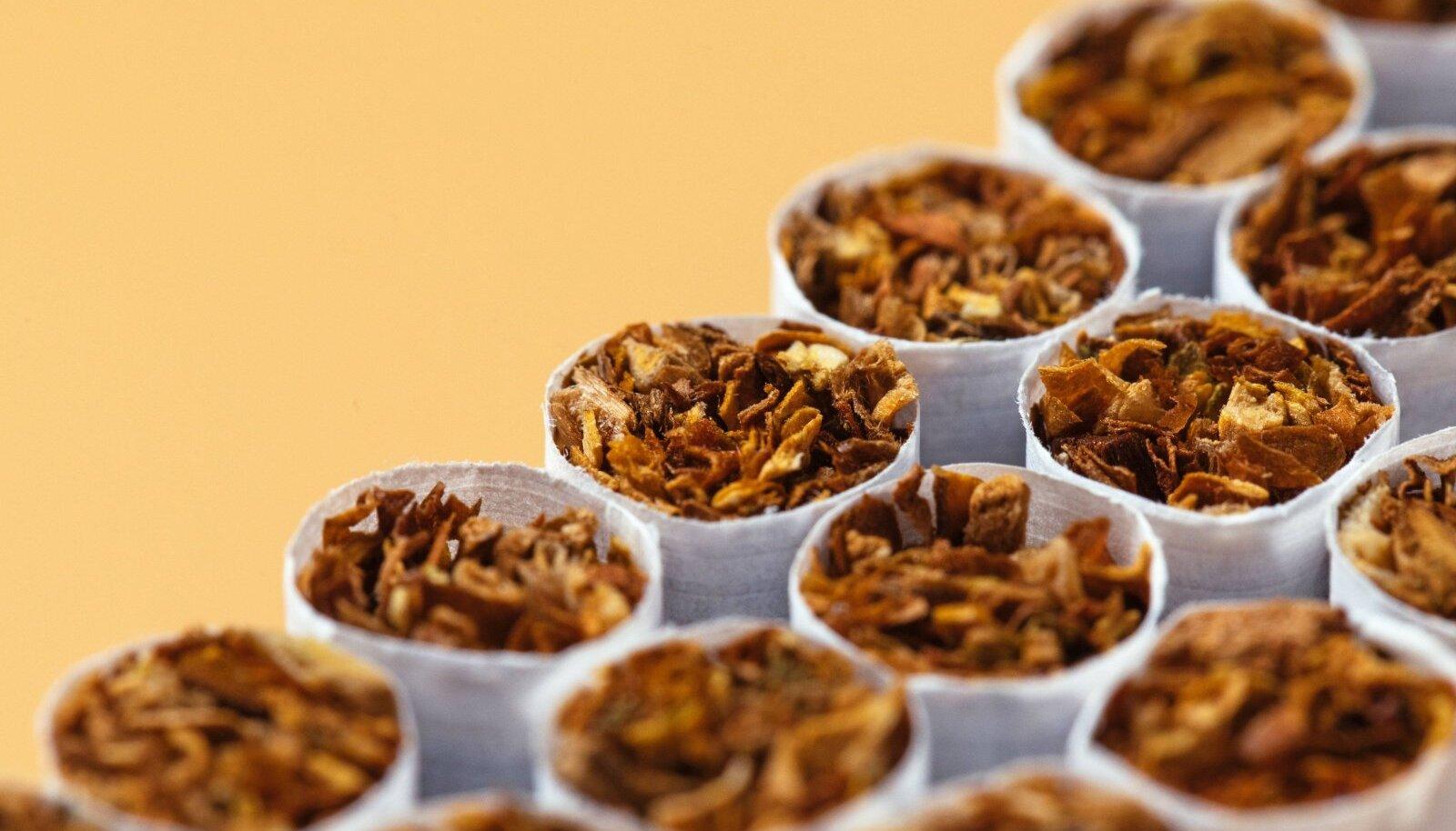 Sigaretid. Foto on illustratiivne