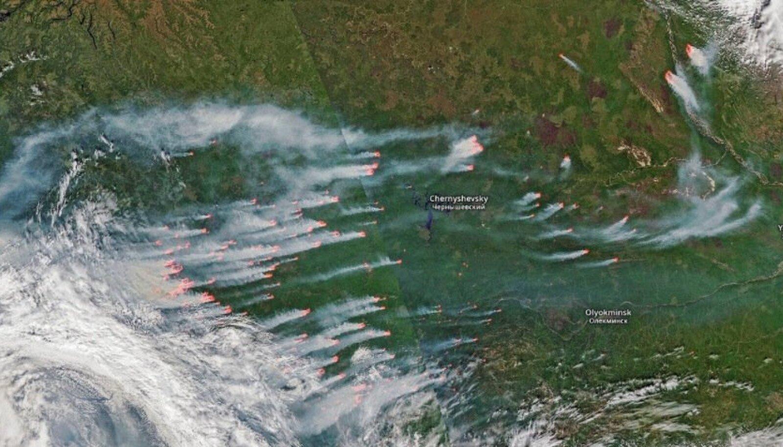 21. juuli satelliidivaade Krasnojarski kraid ja Jakuutiat laastavatele maastikupõlengutele. Pildi laius vastab umbes 1000 kilomeetrile.