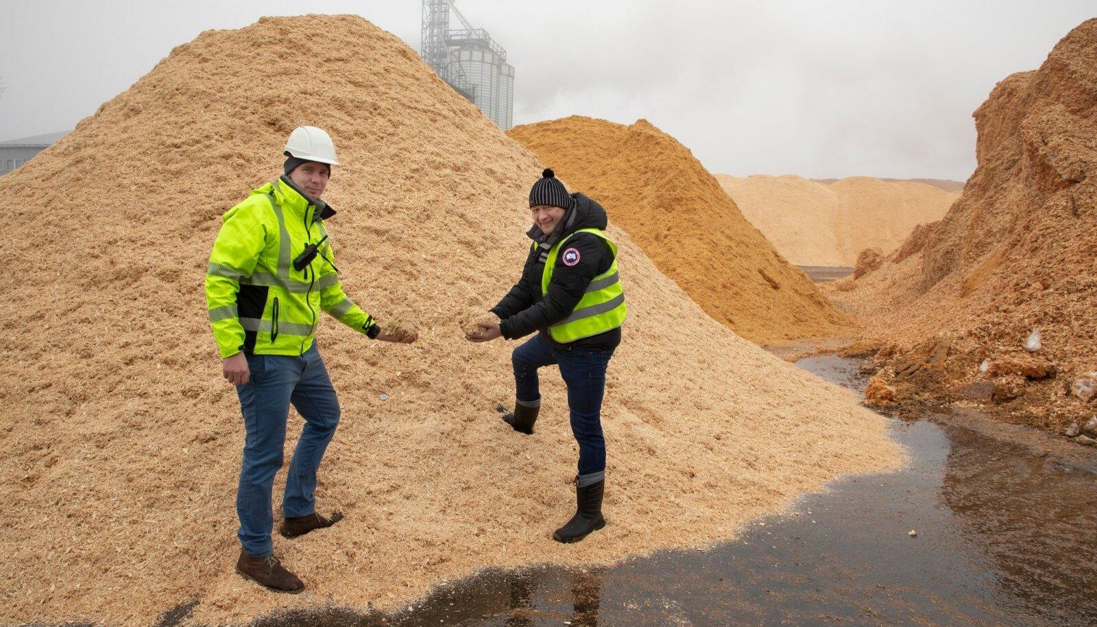 Graanul Biotechi arendusjuht Peep Pitk ning juhatuse esimees Raul Kirjanen demotehase toorainehunniku juures. Just selline kasepuidust mass lõhustatakse tehases uudsel moel ligniiniks ja puidusuhkruteks.