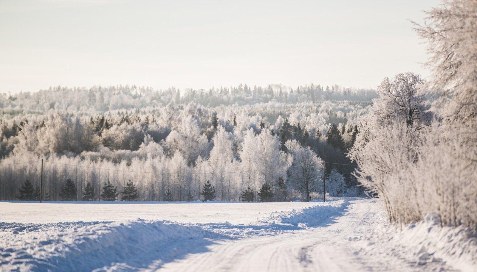 Talvine Lõuna-Eesti
