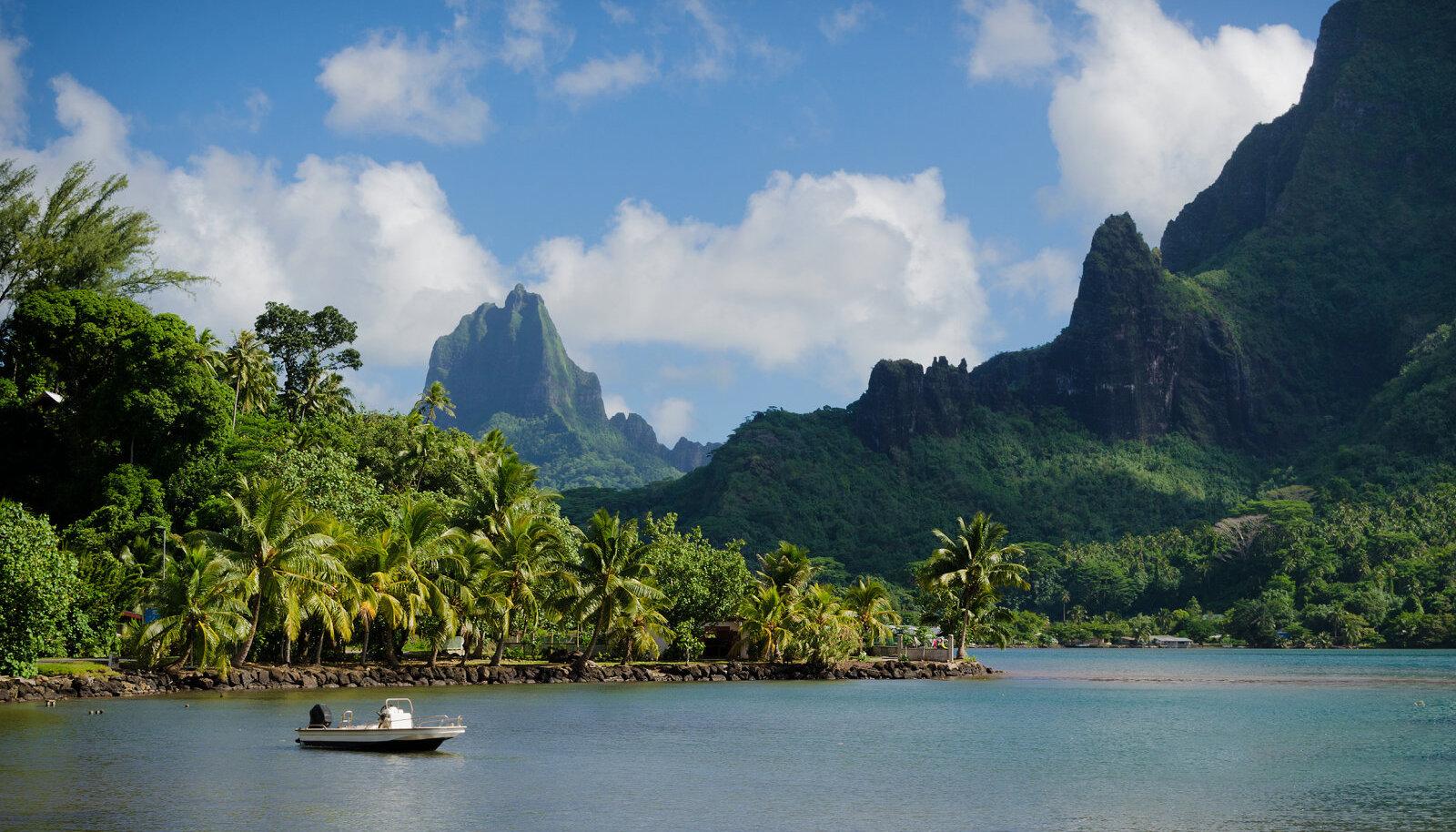 Cooki saared on siiani viirusevabad