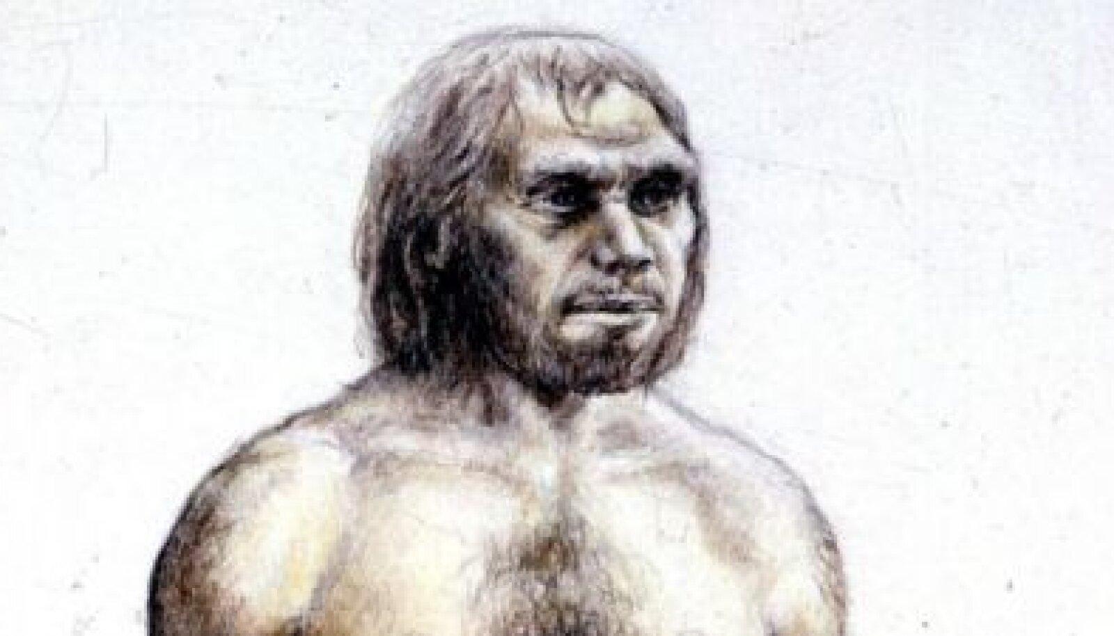 Hetkel saame pakkuda ainult joonist neandertaallasest
