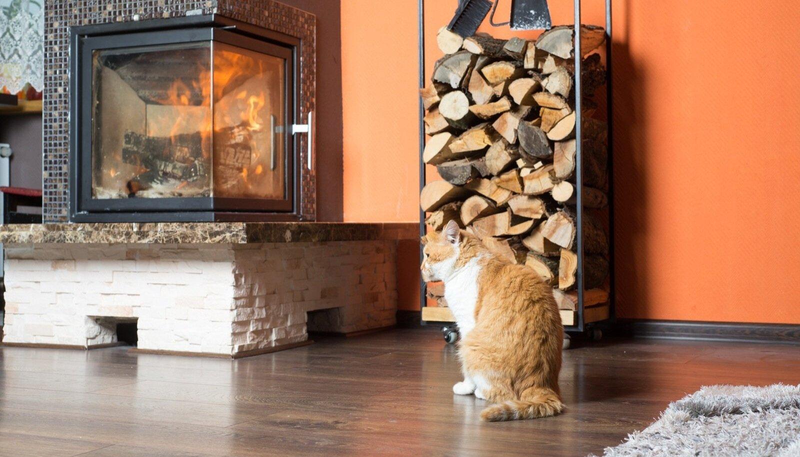 Selleks et rahus kaminatuld nautida, tuleb nii rauast kaminasüdamikku kui ka ümberkaudseid seinu korralikult kuumuse eest kaitsta.