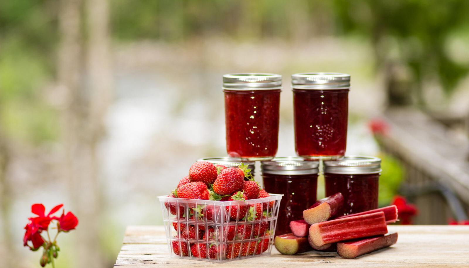 Maasika-rabarberimoos