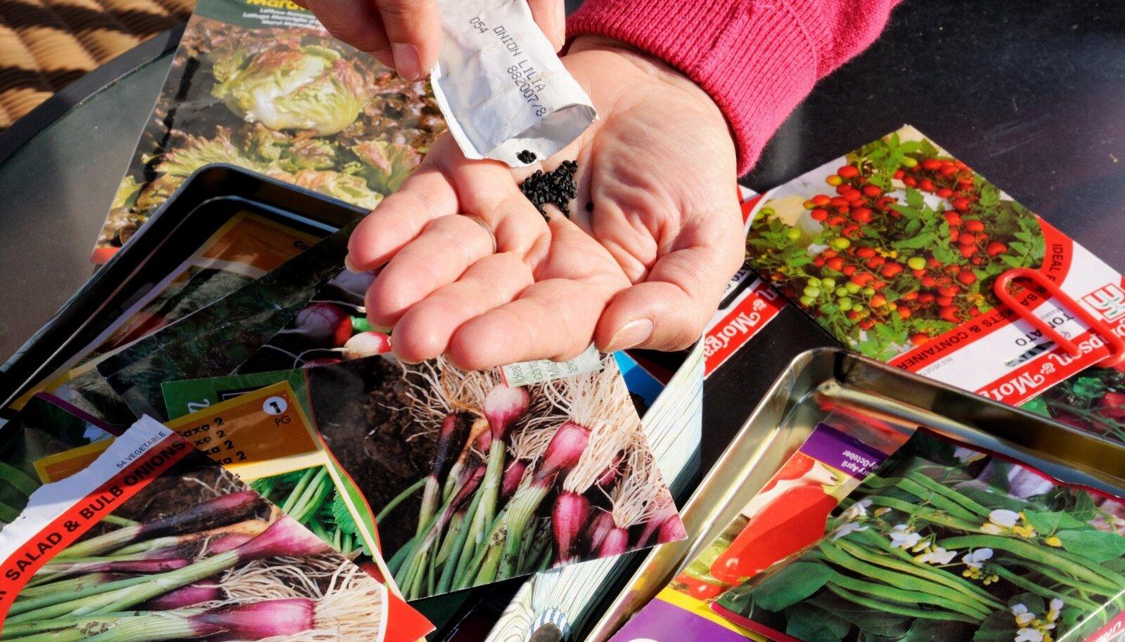 Korrastatud seemnevarud aitavad vältida asjatut aja ja raha raiskamist.