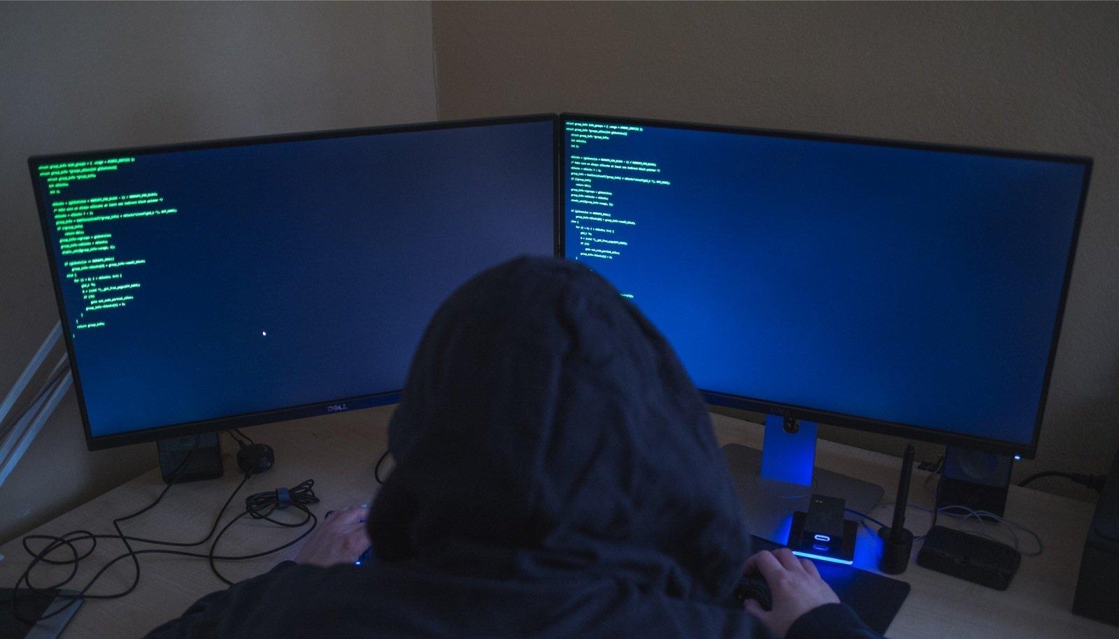 Tänavu on politsei- ja piirivalveameti andmete järgi langenud arvutikelmuste ohvriks 442 inimest, neist 102 juhul on tegemist olnud konkreetsemalt laenudega.