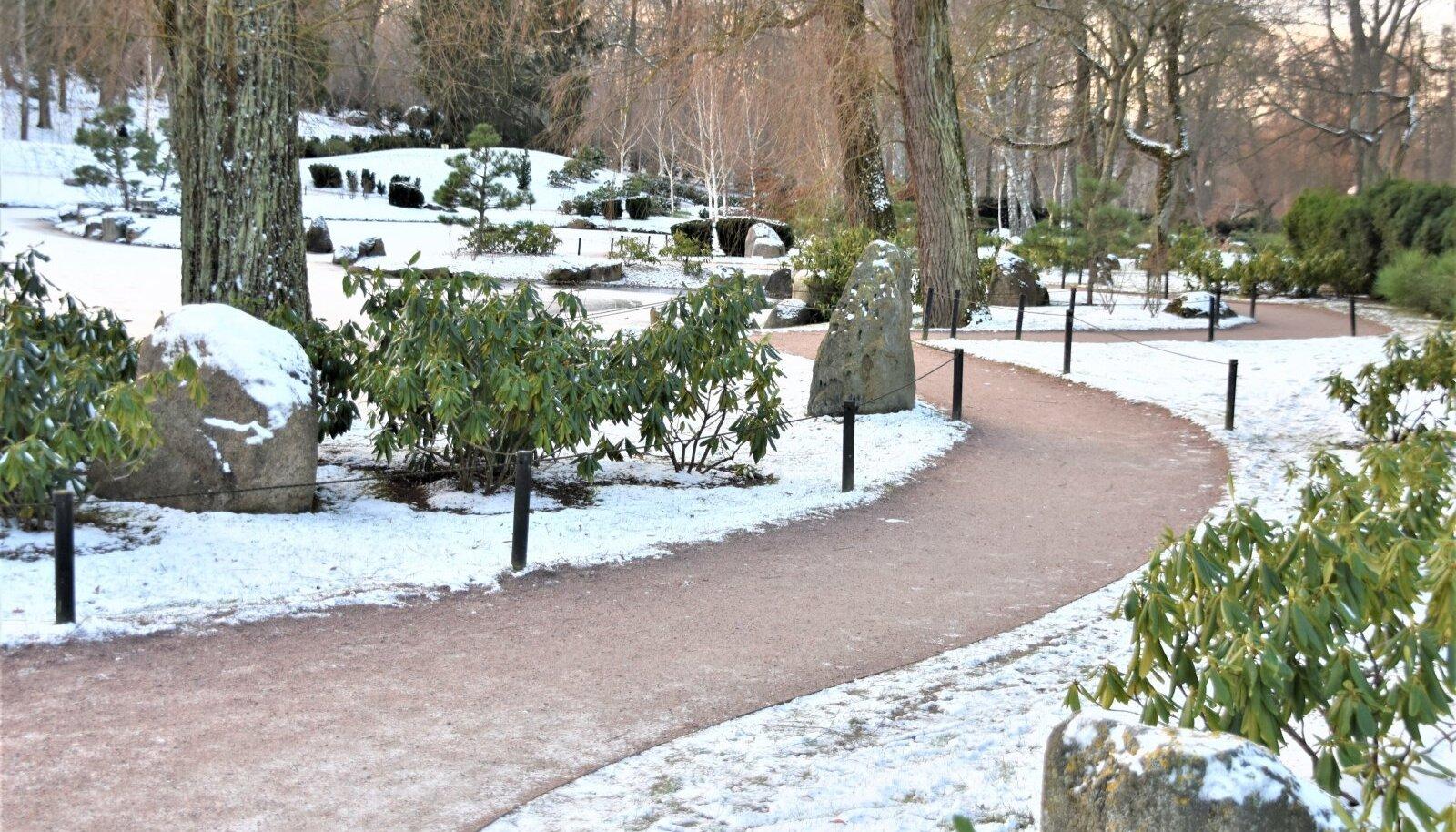Kadrioru pargi Jaapani aed.