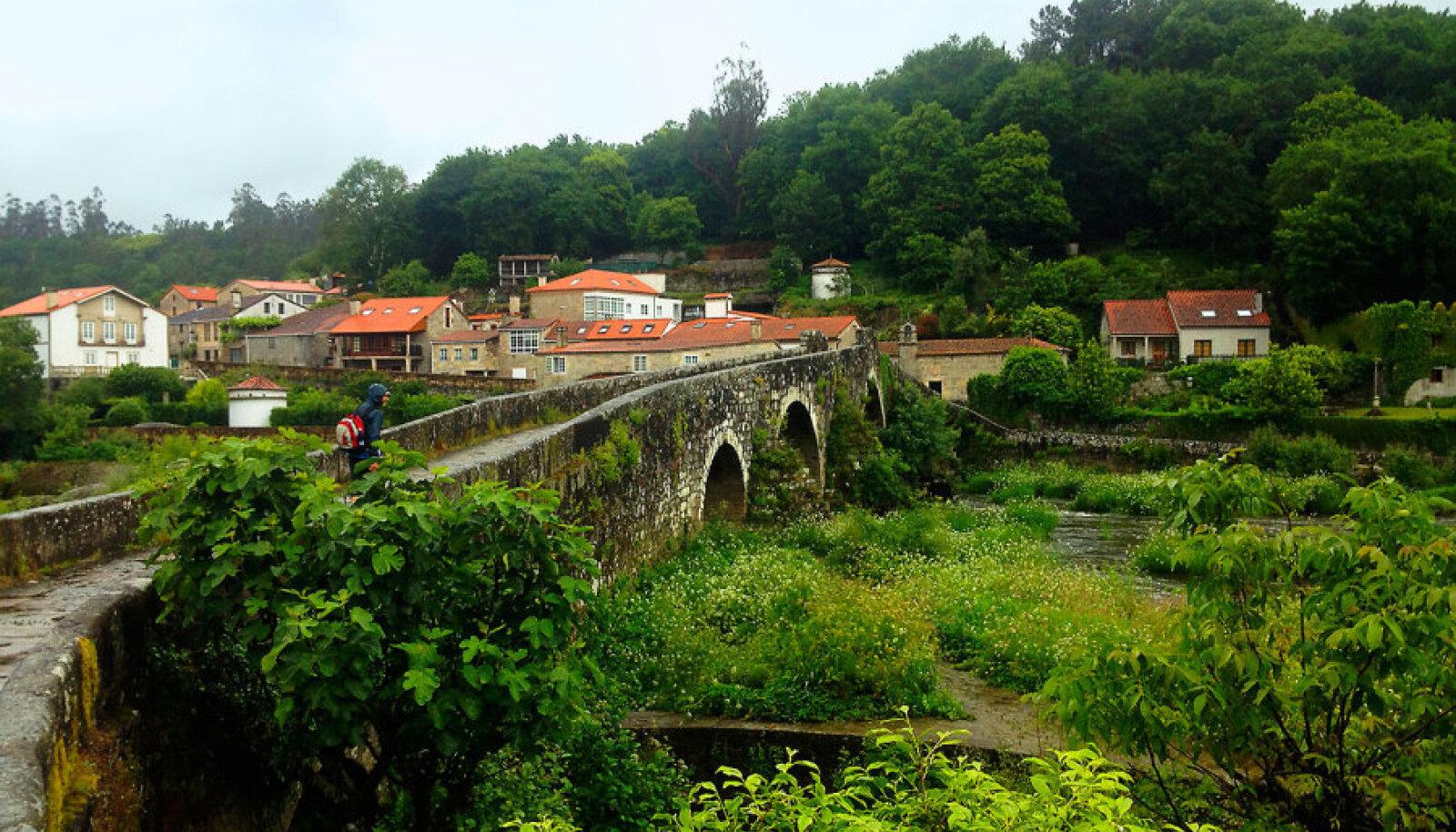 Camino Frances: enimkäidav kolmest tähtsamast Camino Santiago marsruudist. 780kilomeetrisest rajast läbisid selle artikli autorid jalgsi 200 kilomeetrit.