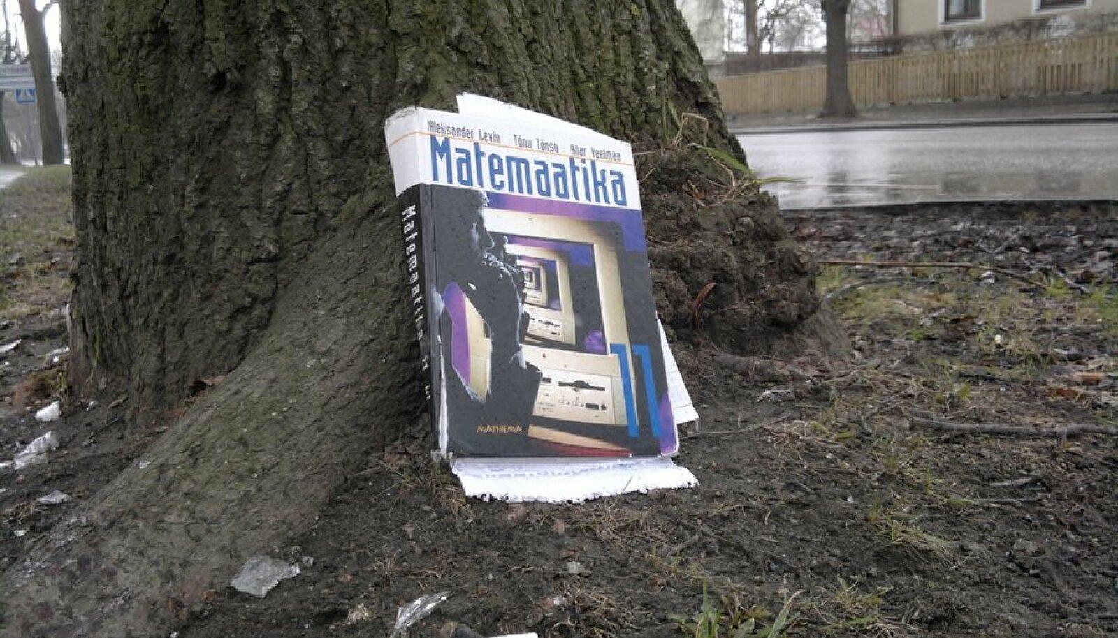 Matemaatika õpik puu ääres