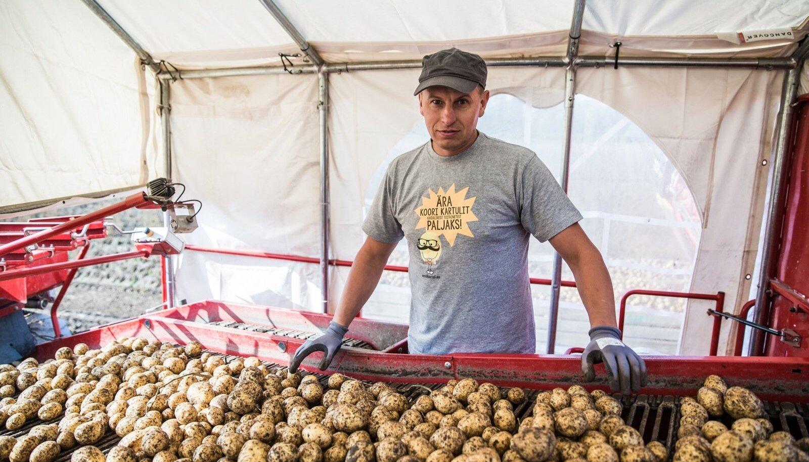 Janek Lass kartulikombaini lindi taga, kui käib sordi 'Gala' võtmine.