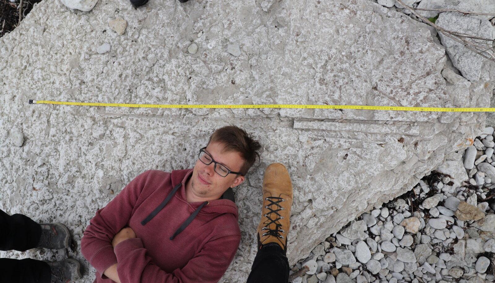 Eesti paekivist võib leida kivistisi, millest suurimateks on mitmemeetriseid molluskite kojad