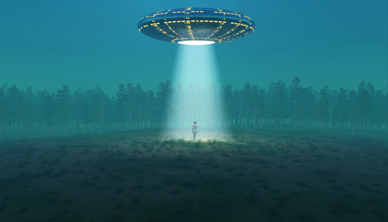 """""""Naine, kes viidi teisele planeedile"""" jutustab loo Virvest, kes sattus 1990. aasta ühel maikuu ööl kummaliste sündmuste keerisesse."""