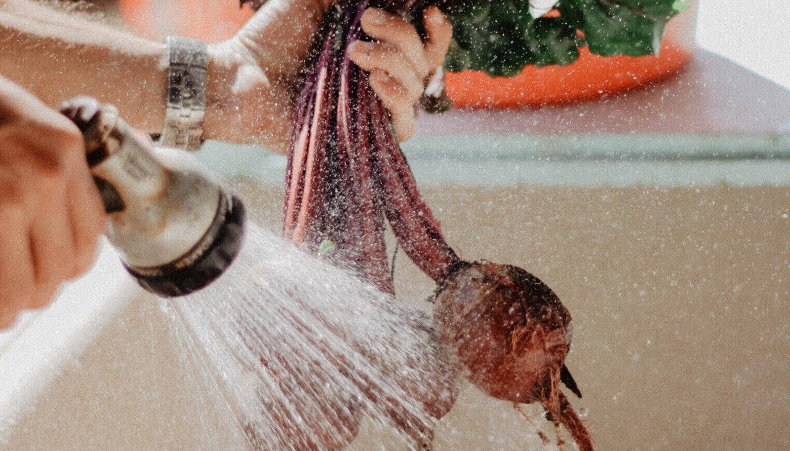Toiduhügieen algab nii lihtsast asjast nagu pesemine.