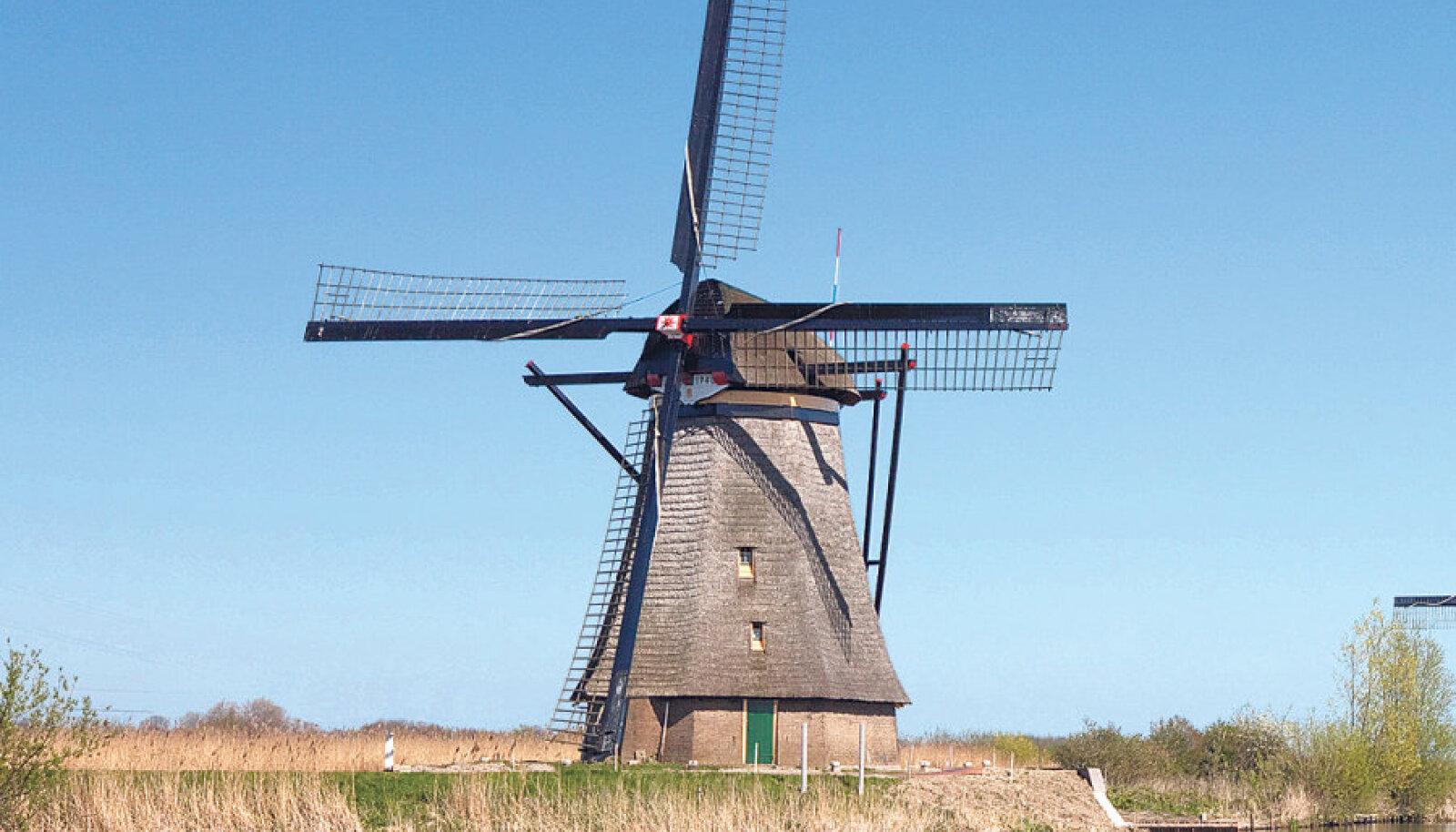 Hollandis Kinderdijki külas  on säilinud 19 tuulikut,  mis ehitati 1740ndate paiku,  et poldrit kuivendada.  Tuulikud kuuluvad UNESCO  maailmapärandi nimistusse.