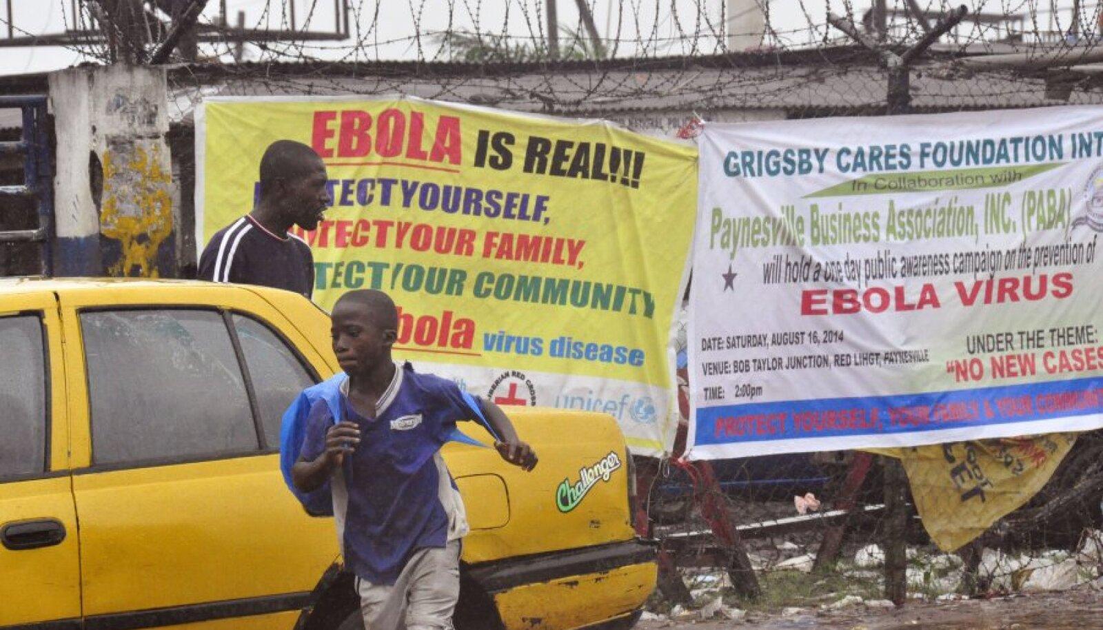 Ebolast hoiatavad plakatid Monrovias. Libeeria elanikest oskab lugeda vaid 43 protsenti.