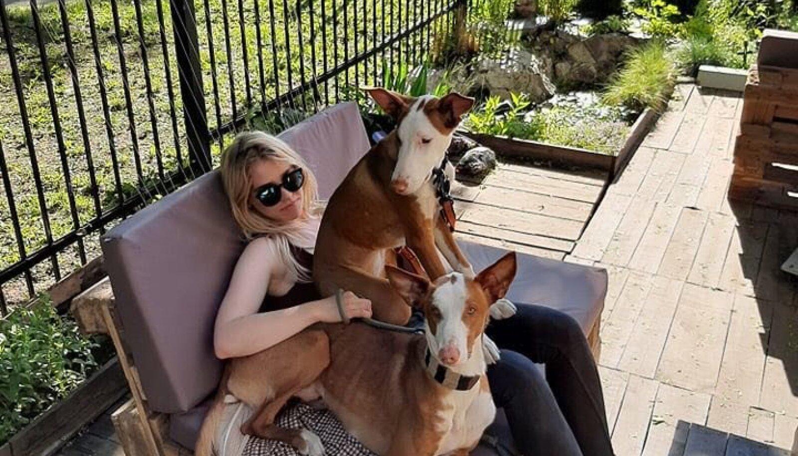 Loomafotograaf Kristiina Tammik koos Ibiza podencodedest lemmikutega.