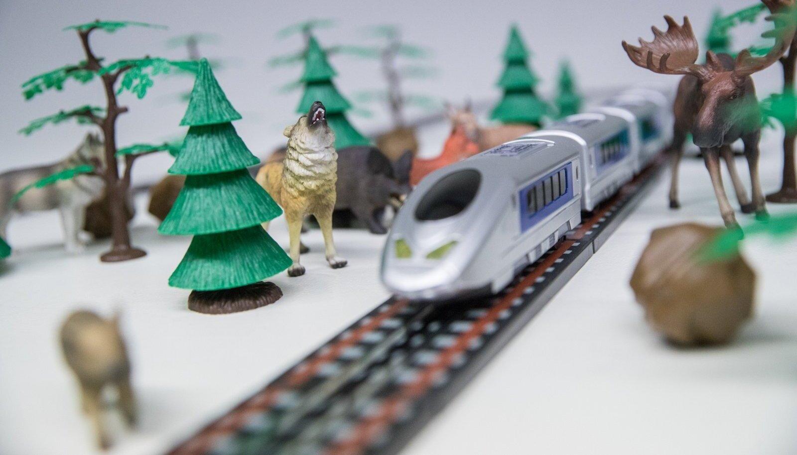 Veel paberil oleva Rail Balticu rajamisel tuleb arvesse võtta kogu elusloodust, mis trassile jääb. Ja vähe seda pole.