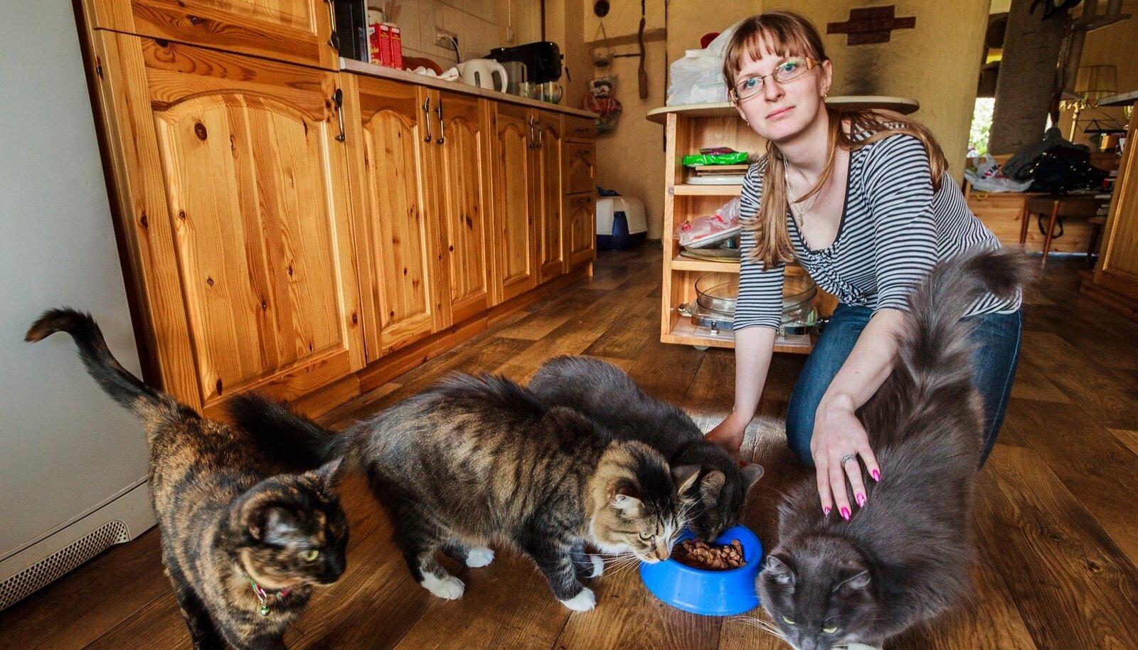Kui kassidele on toas loodud mõnusad elutingimused, ei soovigi nad õue minna, ütleb kassiomanik Heleri Ilves.
