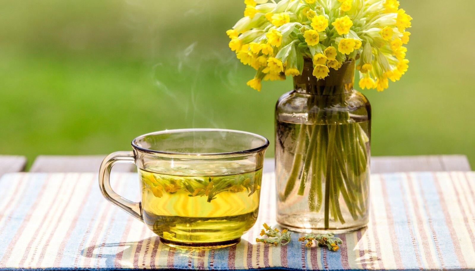 Nurmenukkudest võib maikuus teha kimpe või koguda nende vitamiinirikkaid õisi ja lehti tee tarvis.