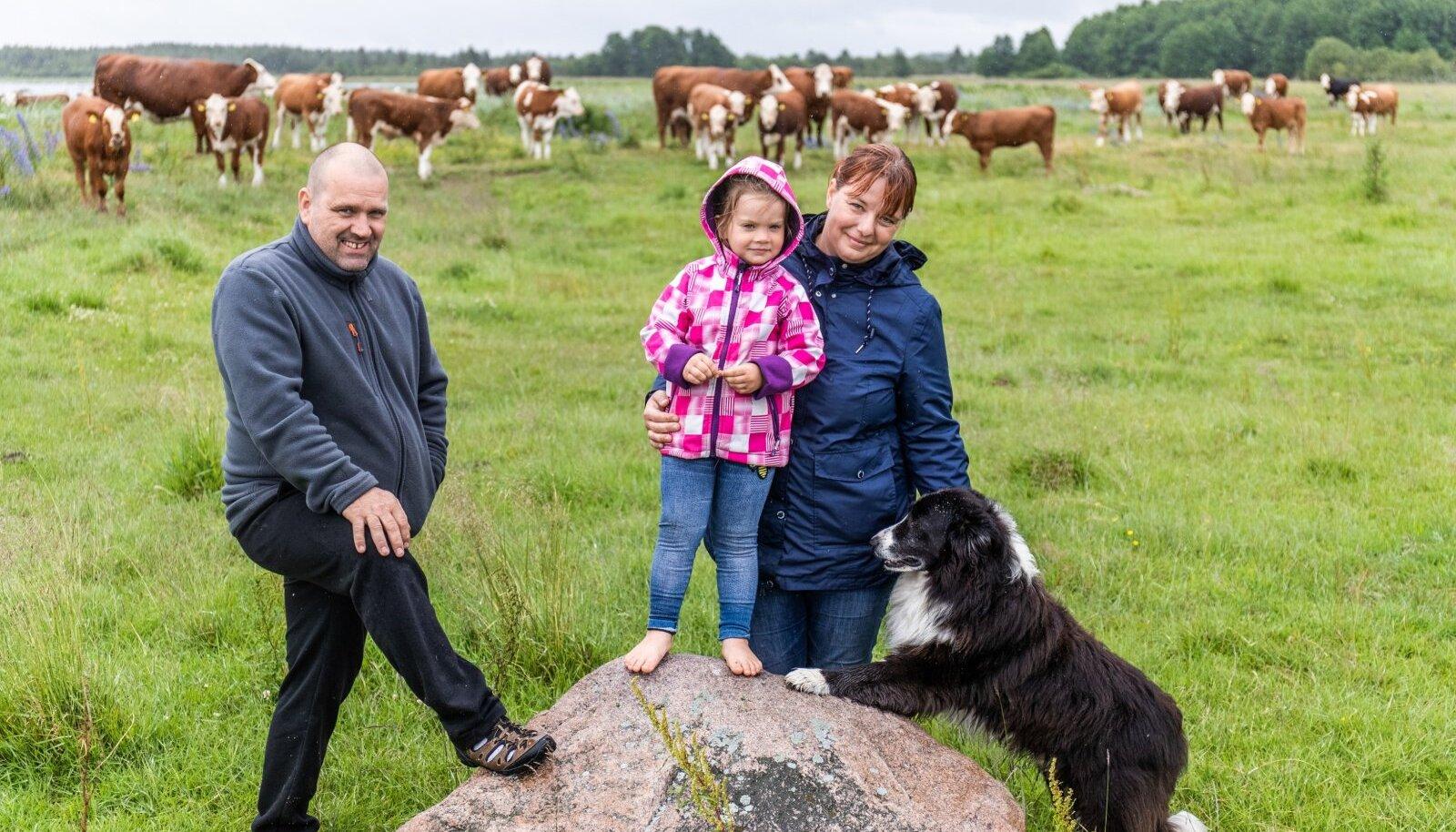 Gert (vasakul) ja Ege Kanarbik (paremal) otsustasid 2009. aastal hakata veiseid kasvatama.