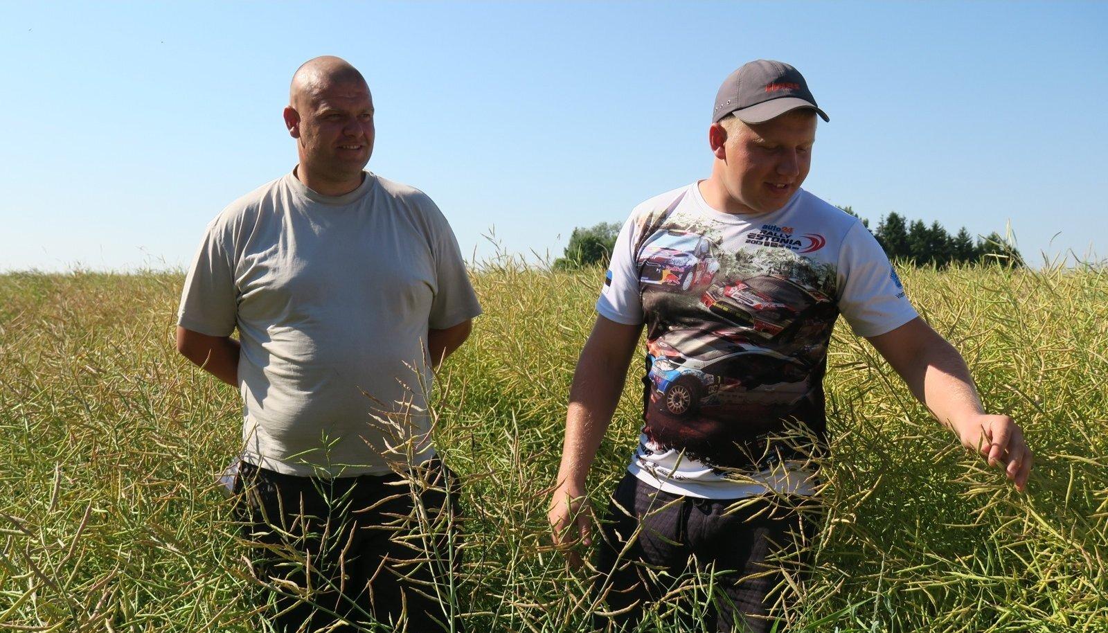 Algaja õnn, sobiv maa või hea töö? Kerseli OÜ noored viljelejad Keit Kirila ja Sven Eerik Pärendson said hea rapsisaagi.