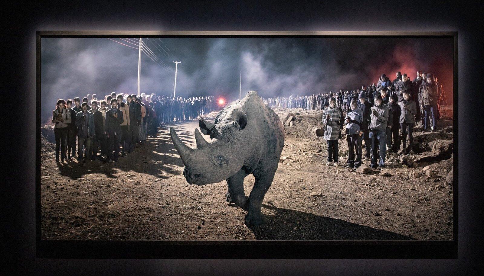 """Fotografiskas Nick Brandti näitus """"See tühi maailm/ Meile jääb vaid tolm"""""""