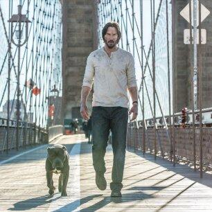 c8a826cc278 FILMIDE TIPP-10 EESTI KINODES: Keanu Reeves tuleb jälle tugevalt