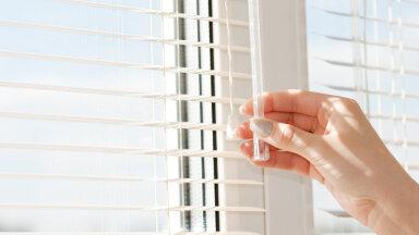 Aeg heita pilk aknal olevale ribikardinale — millal sa seda viimati puhastasid? Kuidas seda õigesti teha?