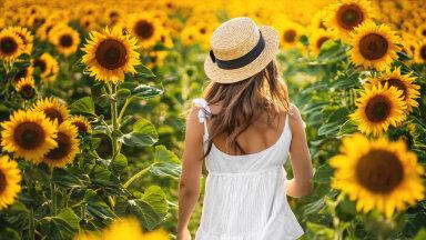 Augustikuu energiad ja olulised päevad