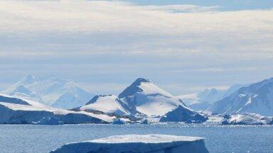 Lõunaookeanis asuv Webbi saar Antarktika lähistel (Foto: Wikimedia Commons / Vincent van Zeijst)