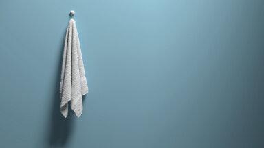 Miks käterätikud ei peaks olema vannitoas? Ehk asjad, mis justkui kuuluvad vannituppa, kuid ei tohiks seal olla